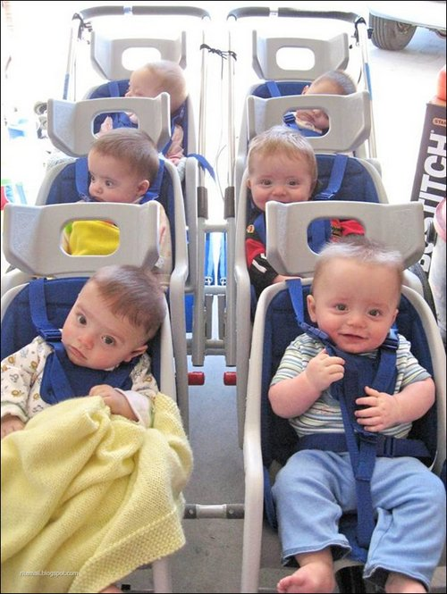 sextuplets9 Amazing Six offspring image gallery