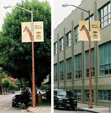 clever advert giraffe zoo