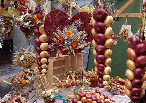 amazing onion festival 35
