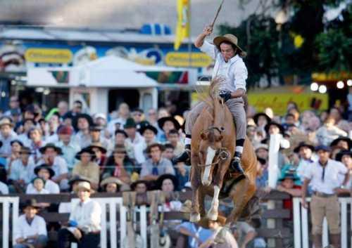 best horse rider 12