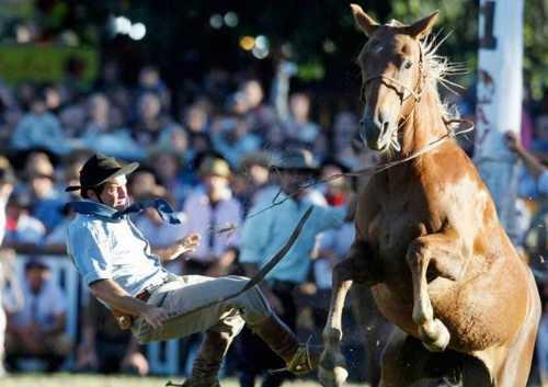 best horse rider 13