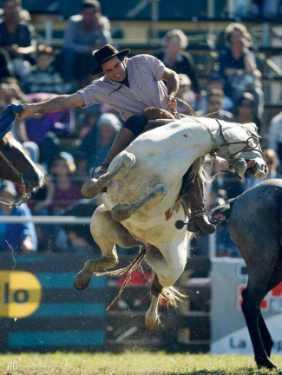 best horse rider 14