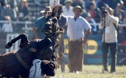 best horse rider 16