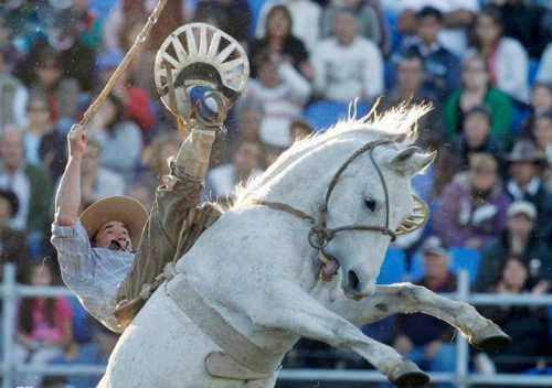 best horse rider 17