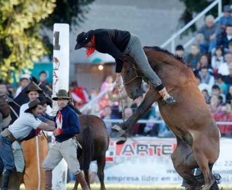 best horse rider 19
