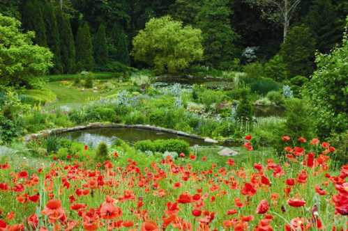 most-beautiful-park-in-the-world-Chanticleer-Wayne-Pennsylvania