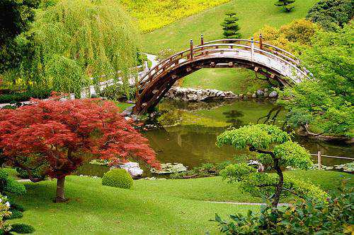 most-beautiful-park-in-the-world-The-Huntington-Botanical-Gardens-San-Marino-California
