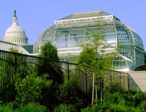 most-beautiful-park-in-the-world-The-United-States-Botanic-Garden-Washington-DC-United-States