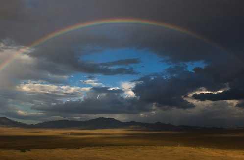 Gorgeous Rainbow 11
