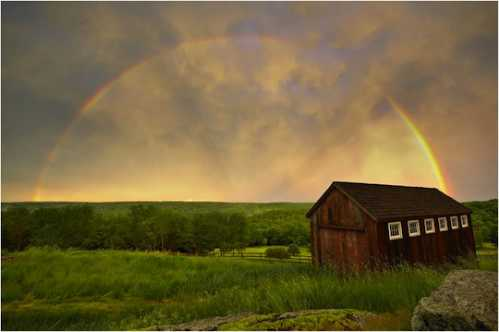 Gorgeous Rainbow 13