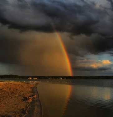 Gorgeous Rainbow 14