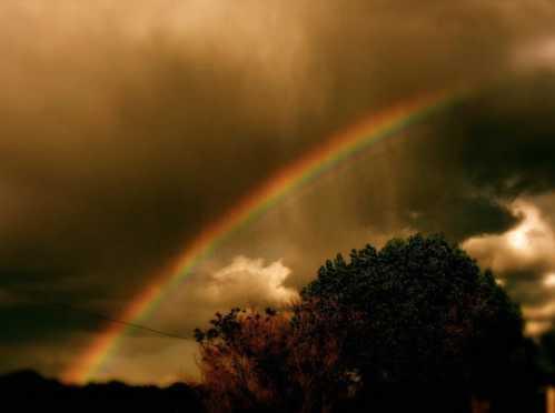 Gorgeous Rainbow 15