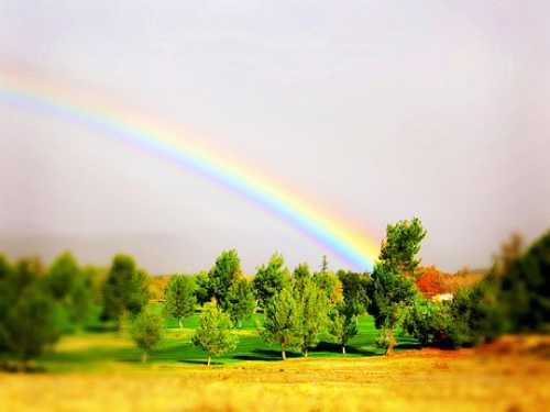 Gorgeous Rainbow 2
