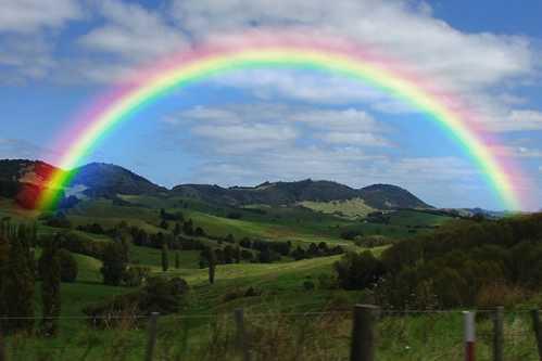 Gorgeous Rainbow 5