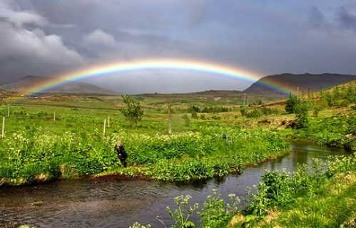 Gorgeous Rainbow 6