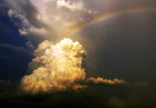 Gorgeous Rainbow 7