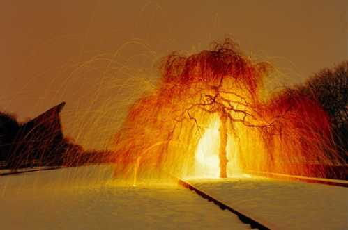 incredible light photography 18
