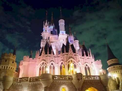 walt-disney-world-castle