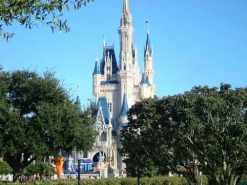 walt-disney-world-castle9