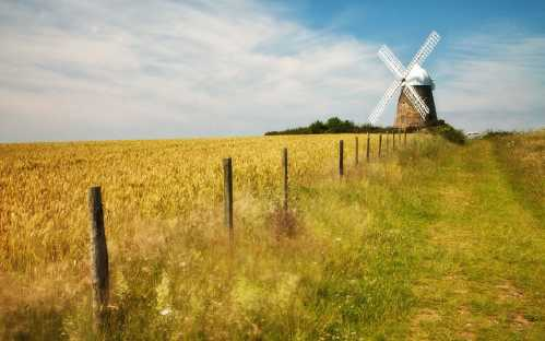 2020 vision britain ambitious nature photography 3