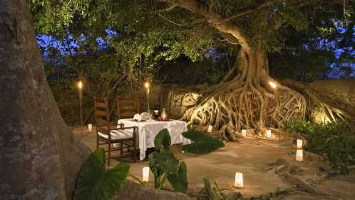 amazing restaurant 25