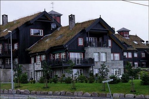 grass roof norway 10
