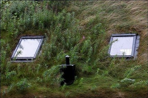grass roof norway 12