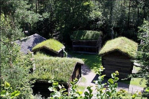 grass roof norway 6