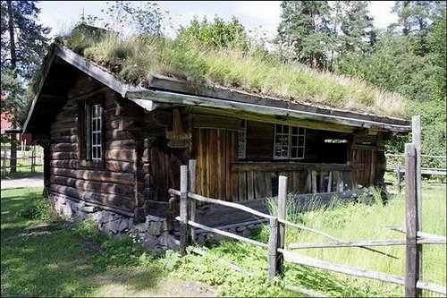grass roof norway 8