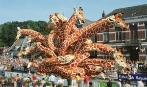 Stunning Flower Parade Of Holland [Fwd: Sharon Rajkumar]
