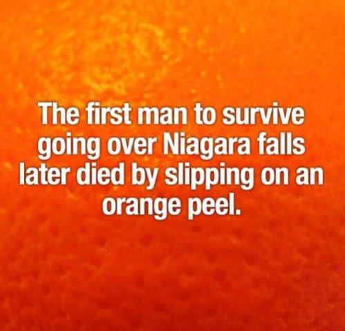 interesting facts 9