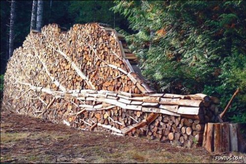 stack firewood 3