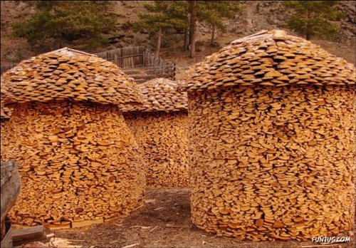 stack firewood 6