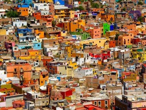 coloring life mexico 6
