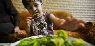 youngest_pepper_eater_1.jpg