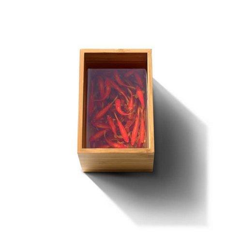 acrylic resin 3