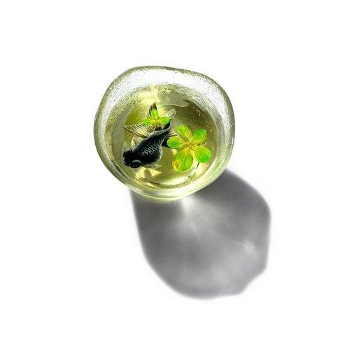 acrylic resin 7
