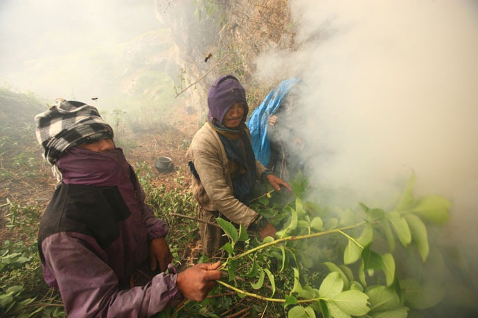 honey-hunters-nepal_10